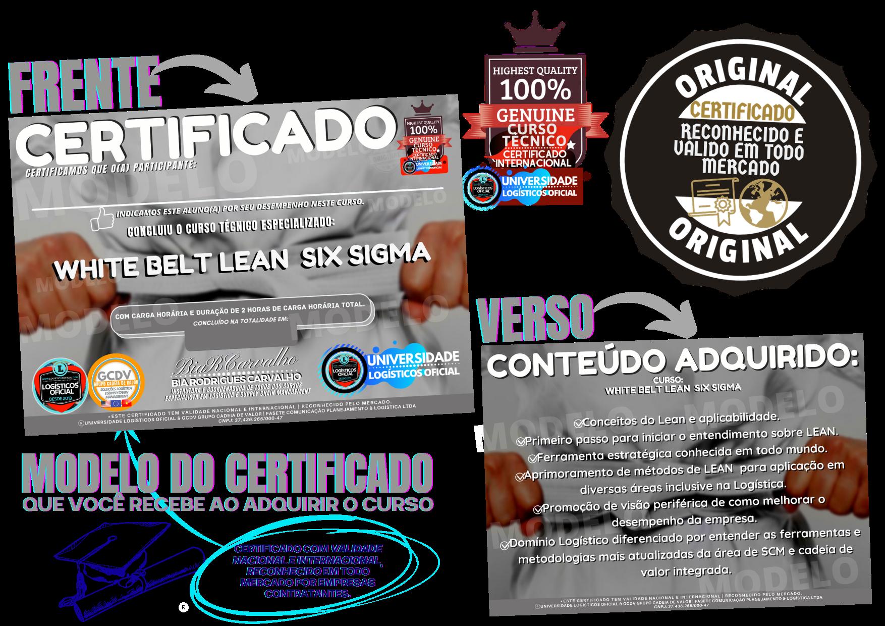 Certificado Lean 6 sigma